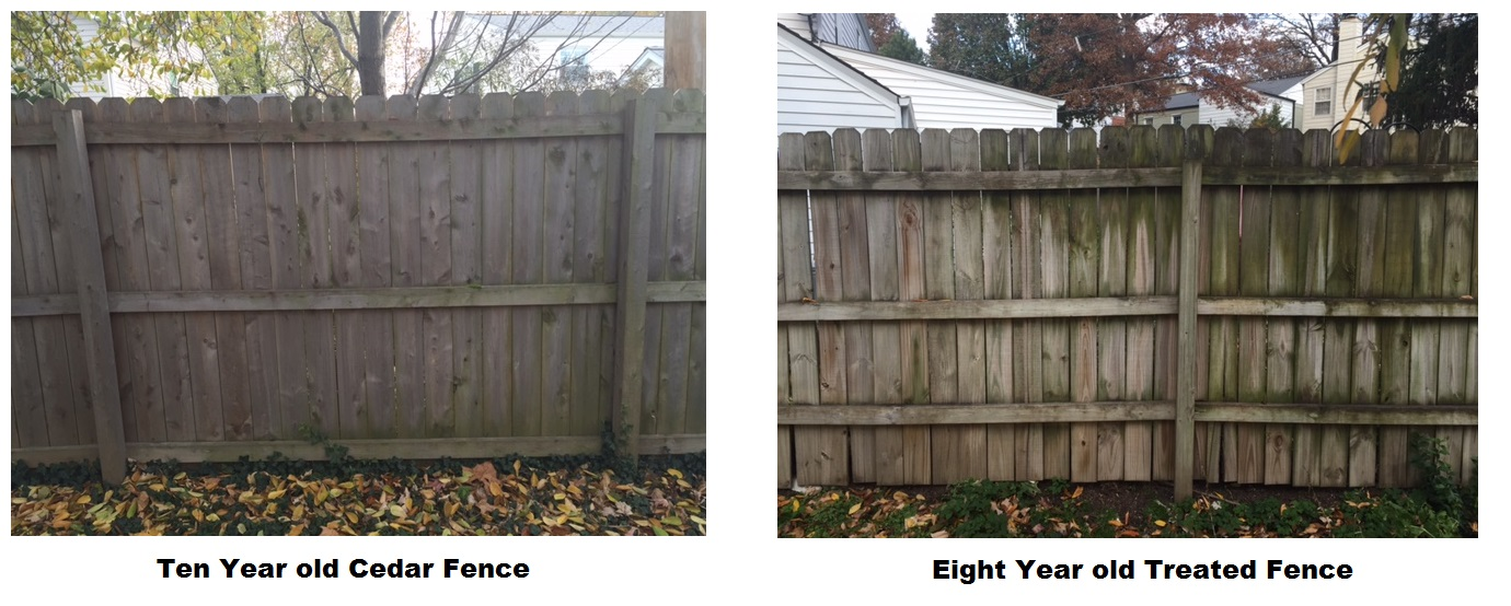 while not the lowest cost option cedar will outperform any treated fence below is a comparison of a ten year old cedar fence versus a eight year old